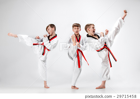 The studio shot of group of kids training karate 29715458