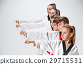 The studio shot of group of kids training karate 29715531