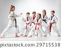 The studio shot of group of kids training karate 29715538