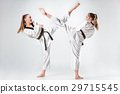 The studio shot of group of kids training karate 29715545