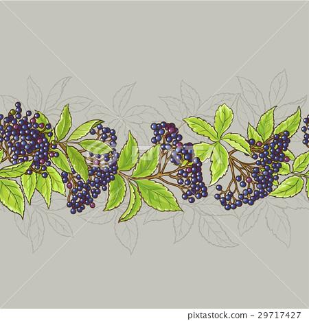 elderberry seamless pattern 29717427