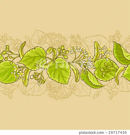 linden vector horizontal pattern 29717430