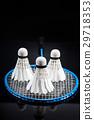 badminton, paddle, shuttlecock 29718353