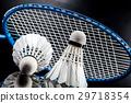 羽毛球 盪槳 毽子 29718354