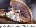 羽毛球 盪槳 毽子 29718447