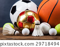 Sports accessories. paddles, sticks, balls  29718494