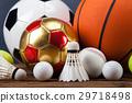 Sports accessories. paddles, sticks, balls  29718498