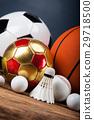 Sports accessories. paddles, sticks, balls 29718500