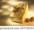 Christmas 29724044
