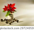 Christmas 29724059
