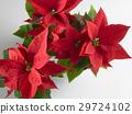 Christmas 29724102