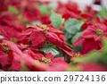 Christmas 29724136