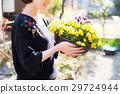 园艺 花朵 花卉 29724944