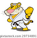 Tiger's karate, tiger character, tiger, tiger, karate, fighting sports 29734891