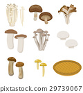 mushroom, mushrooms, set 29739067