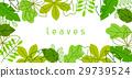 natural, green, spring 29739524