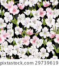 Beautiful alstroemeria on seamless background 29739619