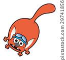 日本鼯鼠 小飛鼠 動物 29741856