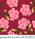Dianthus caryophyllus - Carnation Flower 29742652