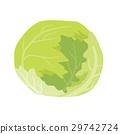 양상추 【재료 시리즈] 29742724