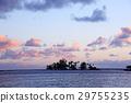 아침 놀 코코넛 아일랜드 29755235