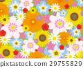 花朵 花卉 花 29755829