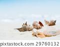 해변 · 모래 이미지 29760132