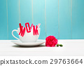 mothers day, mother's day, carnation 29763664