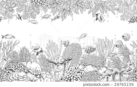 Coral Reef and Swimming Fishes Pattern 29765239