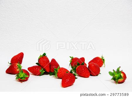 신선한 딸기 29773589