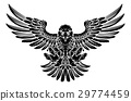 Swooping Eagle 29774459