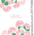 floral, flower, hydrangea 29775986