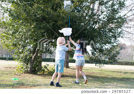 Children taking insects Summer vacation 29785527