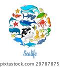海洋生物 鱼 海洋 29787875