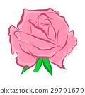 beautiful, blooms, botanical 29791679