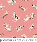 斗牛梗 杂种犬的一种 动物 29799419