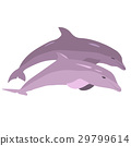 Vector image of dolphins jumping out of the water 29799614