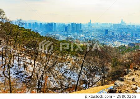 Namsan park view 29800258