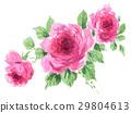 bloom, blossom, blossoms 29804613