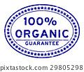 organic, vector, logo 29805298