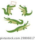 crocodile, isolated, vector 29806617