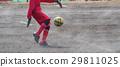 축구 축구 29811025