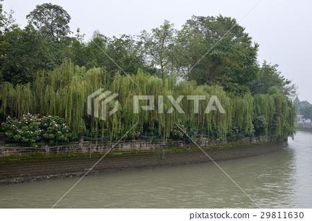 성도의 거리 (중국 쓰촨성) 29811630