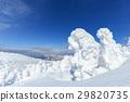 摻鋁氧化鋅 覆有霜的樹 冰霜覆蓋的樹木 29820735