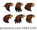 eagle, bird, vector 29821205