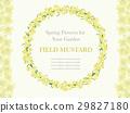 flower, flowers, frame 29827180