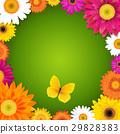 蝴蝶 花朵 花 29828383