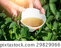 Infusion of nettles 29829066