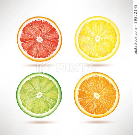 lime, lemon, orange, grapefruit slices 29832145