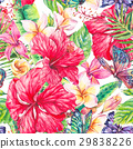 tropical,flower,watercolor 29838226